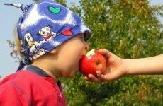 Ешеріхіоз у дітей: симптоми, мікробіологія, лікування у дорослих і дітей, збудник, профілактика