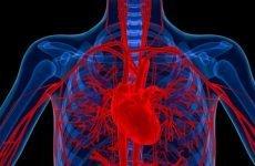 Вазоспастический тип стенокардії — лікування та прогноз
