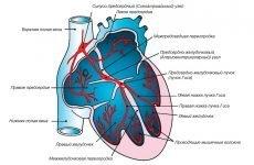 Блокада серця: види, діагностика, лікування та ризик небезпечних ускладнень