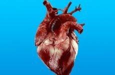 Симптоми, етіологія, патогенез та методи лікування порушень внутрішньошлуночкової провідності