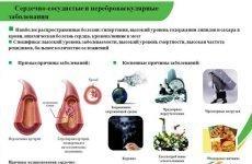 Як лікувати захворювання судин: симптоми хвороби, діагностика і лікування