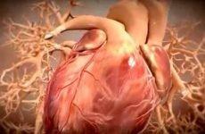 Болить серце у підлітка: що робити і чому дитина скаржиться на серцевий біль
