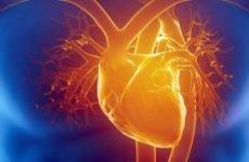 Що таке інфаркт міокарда, які методи діагностики і лікування існують?