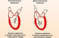 Як міряти тиск ручним (механічним) тонометром: на якій руці міряти і які помилки