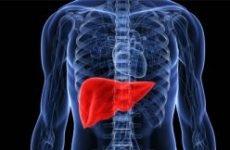 Чищення печінки при псоріазі, очищення організму при псоріазі