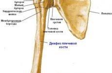 Як лікувати перелом плечової кістки з використанням иммобилизирующих лангет, медикаментозна терапія та види хірургічних операцій