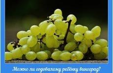 Можна однорічному дитині виноград: чи не принесе шкоди корисна ягода