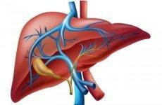Біліарна гіпертензія: причини, симптоми, діагностика і методи лікування