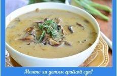 Чи можна дітям грибний суп: як і з якого віку почати знайомство з грибовницей