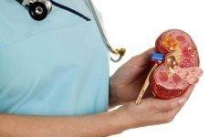 Ниркова гіпертензія: механізм розвитку, діагностика, як знизити в домашніх умовах