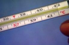 Яка температура при ГРВІ, як визначити: грип або ГРВІ, в чому відмінності від ГРЗ?