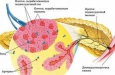 Захворювання підшлункової залози: симптоми хвороб, лікування, ознаки порушень