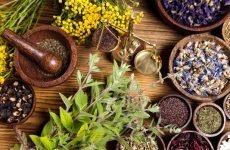 Лікування ліпоми народними засобами: переваги і рецепти