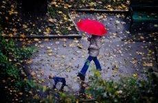 Дощ не є причиною болю в суглобах