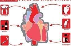 Профілактика інфаркту міокарда: як запобігти інфаркт