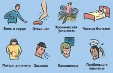 Як почистити судини в домашніх умовах: чистка народними засобами
