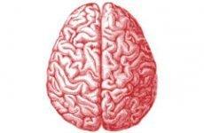 Ознаки епілепсії у дітей: як виявити хворобу