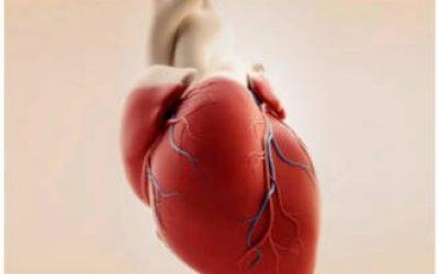 Правошлуночкова серцева недостатність – симптоми і лікування гострої та хронічної форми