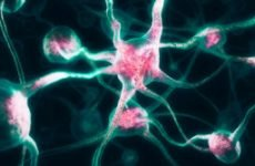 Невралгія: симптоми у дорослих, лікування шиї, ніг, грудної клітини, спини