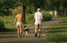 Прогулянка 20 хвилин в день подовжує життя