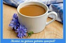 Чи можна дітям давати цикорій: не зашкодить малюкові корисний аналог кави?