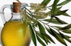 Масло чайного дерева від лишаю: інструкція, способи лікування