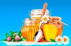 Рецепти настоянок від підвищеного тиску суміші проти гіпертонії