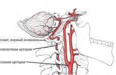 Мучить безсоння при шийному остеохондрозі? Причини, лікування та профілактика
