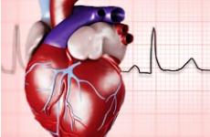Брадикардія: види, причини, лікування і профілактика рідкісного пульсу