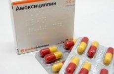 Амоксицилін при грипі, застуді, гаймориті: як можна приймати, скільки днів пити?