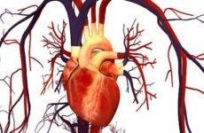Причини, симптоми та лікування метаболічної кардіоміопатії
