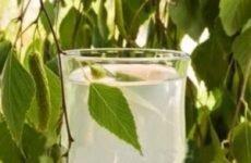 Березовий сік користь та шкода:скільки можна пити в день