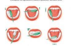 Гігієна порожнини рота у дорослих: правильний догляд, поради та рекомендації