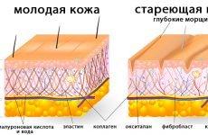 Рейтинг кращих кремів для омолодження і підтяжки шкіри обличчя