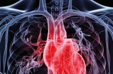 Рибоксин препарат нормалізує роботу міокарда