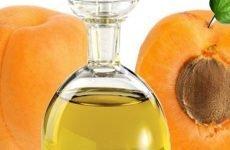 Використання абрикосового масла в боротьбі проти зморшок