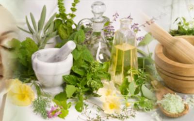 Трави для обличчя — унікальні природні властивості допоможуть впоратися зі зморшками