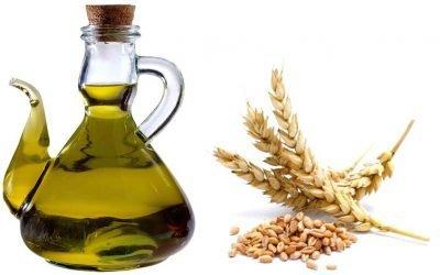 Масло зародків пшениці для обличчя від зморшок — кращі рецепти в домашніх умовах
