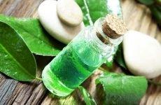 Масло чайного дерева для зубів: інструкція по застосуванню
