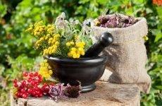 Народні засоби від хропіння: ефективні настоянки і фитосборы