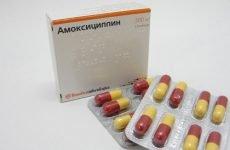 Як приймати Амоксицилін при ангіні?