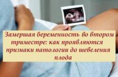 Чим загрожує в подальшому завмерла або розвивається вагітність на другому триместрі: причини патології, ознаки, які можна розпізнати вчасно