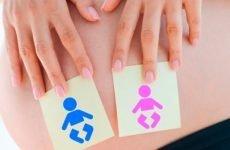 Стать дитини по оновленню крові: як дізнатися стать майбутнього малюка по групі крові батьків, використовуючи метод відновлення за прикладами з таблиці