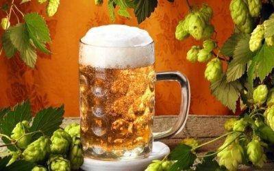 Як вживання пива впливає на тиск, воно підвищує або знижує його?