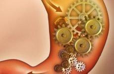 Функції шлунка: секреторна, евакуаторна, ендокринна