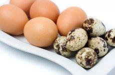 Яйця для шлунка: користь, шкоду, як вживати
