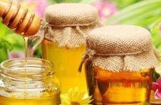 Мед при виразці шлунка: чим корисний, протипоказання