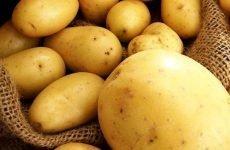 Можна їсти картоплю при гастриті шлунка і які страви з нього приготувати?