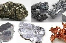 Як вивести з організму солі важких металів