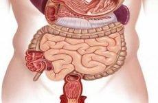 Пенетрація виразки шлунка: ускладнення, лікування, симптоми